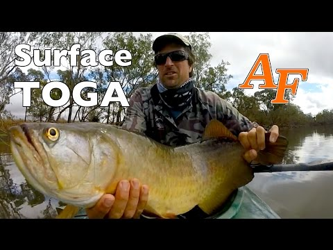 Kayak Fishing Arowana Topwater Saratoga Andysfishing Andy's Fish Video EP.261