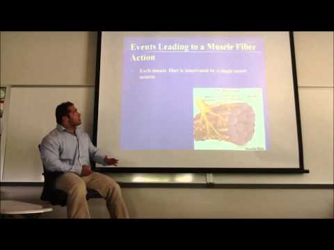 Lecture One: Exercise Physiology Video Review - YouTube
