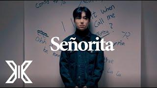 [LAB X] Shawn Mendes, Camila Cabello - Señorita (COVER by X1 이은상)