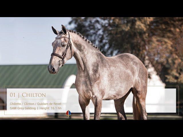 Callaho Chilton