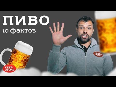 Пиво. Вред или польза? 10 фактов.