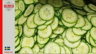 Cucumber: Slicer 2 mm