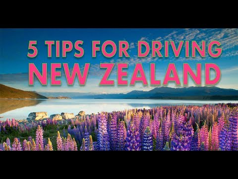 5 Tips for driving in New Zealand