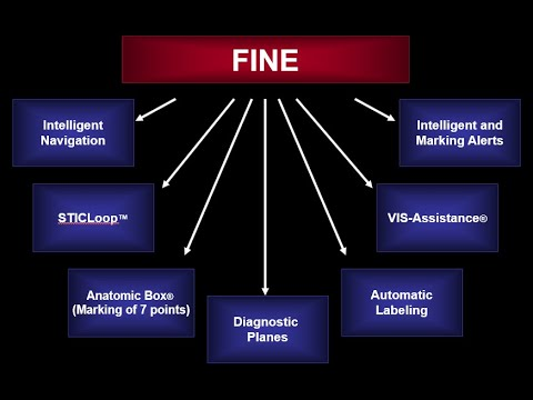 What is FINE?