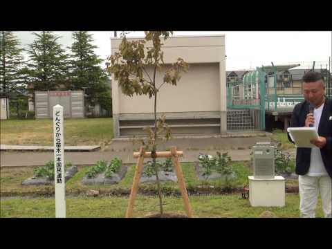 2014年6月28日【記念植樹】仙台市立栗生小学校