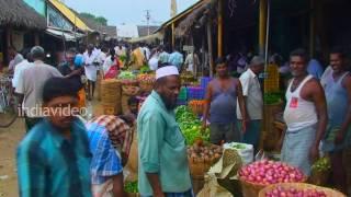 Rajapalayam Market, Tamilnadu
