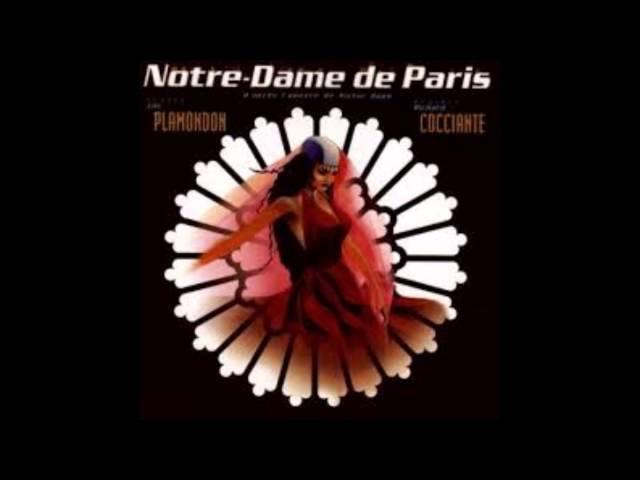 Notre Dame De Paris Dechire My Remix