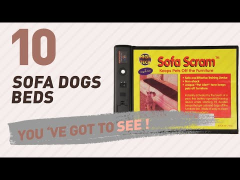 Sofa Dogs Beds // Pets Lover Channel Presents: