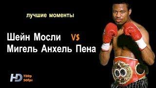 Шейн Мосли vs. Мигель Пена (лучшие моменты) 720p 50fps