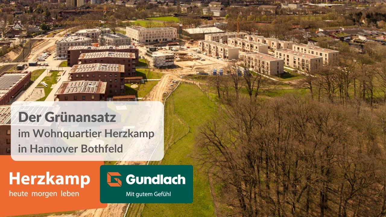 Grünansatz im Herzkamp - Hannover