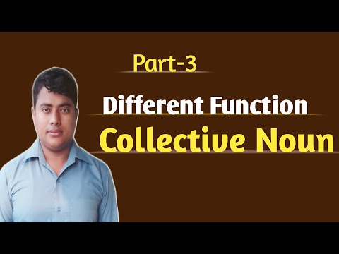 #ibrahim360 | The Function of collective noun | মাত্র ৬ টি নিয়মে সকল collective noun শিখুন