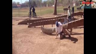 Best New Funny Video Ever  Funny Videos Of People Falling Ever