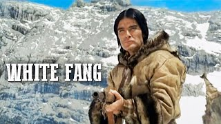 White Fang (Free Adventure Film, Western Movie, Full Length, English) 1973, HD Remastered