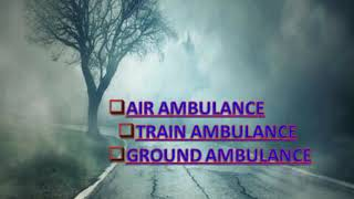Comfortable Service provider by Global Air Ambulance in Varanasi