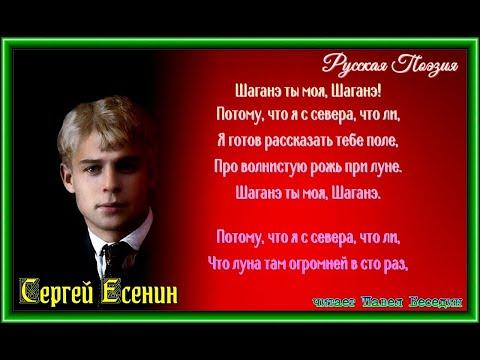 Шаганэ ты моя Шаганэ  —Сергей Есенин —читает Павел Беседин