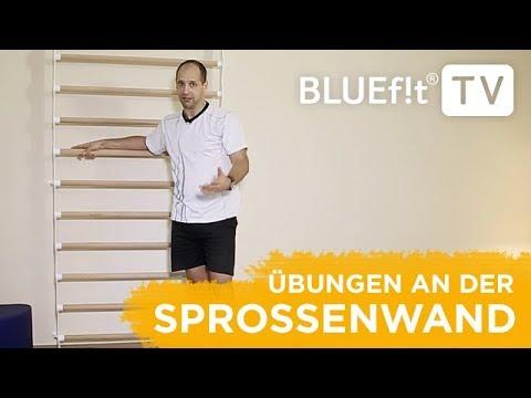 Sprossenwand Übungen | Sprossenwand Training für den ganzen Körper