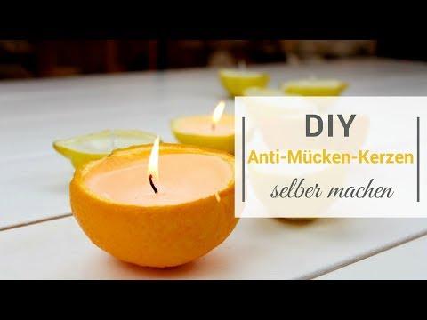 DIY: Anti-Mücken-Kerzen selber machen