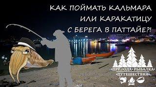 Рыбалка на пхукете самостоятельно с берега