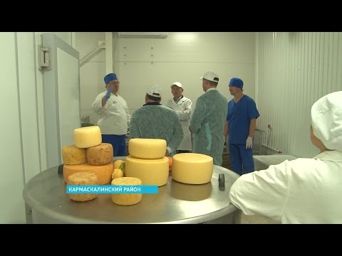Рустэм Хамитов посетил сыроварню в Кармаскалинском районе, где изготавливают итальянские сыры