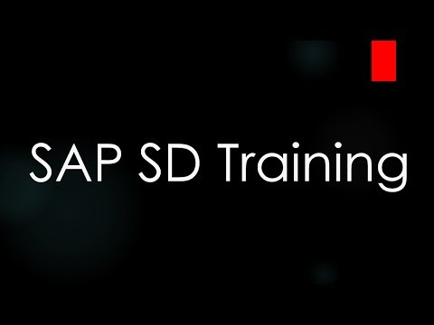 SAP SD Training - Introduction to ERP and SAP SD (Video 1)   SAP ...