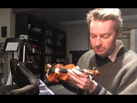 Mendini by Cecilio 1/10 scale violin unboxing & review