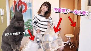 老婆又買了一大箱和幾個大袋子的兔子周邊!? 這次是什麽樣的房間改造呢?【Ruri醬的成長日記#6】