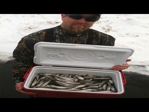 La pesca in SPb al nord