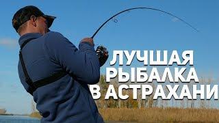Рыбалка в астраханской области камызякский район