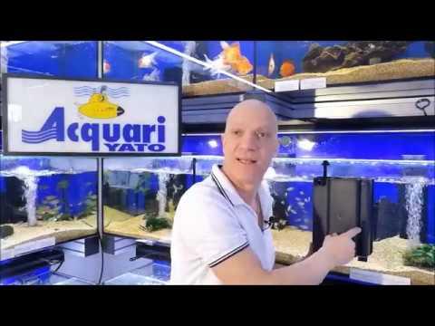 Come mantenere pulito il filtro dell'acquario