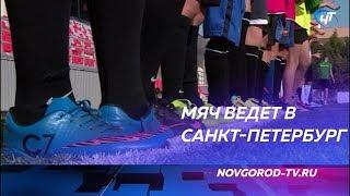 В Великом Новгороде завершился региональный этап Фестиваля детского дворового футбола