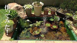 ビオトープの池をトロ舟とレンガで作ってみた