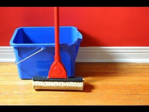 Remove Cat Urine From Wood Floors In Birmingham Al