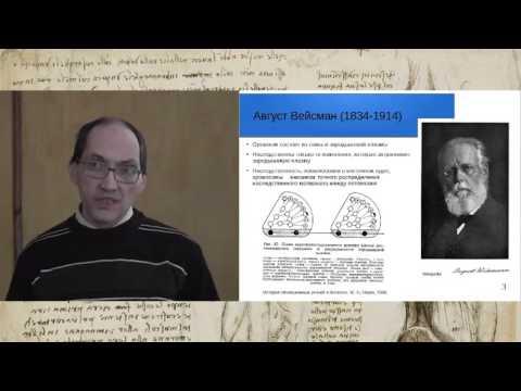 Проблема наследования приобретенных признаков в эволюционной биологии: от Спенсера и Вейсмана до наш