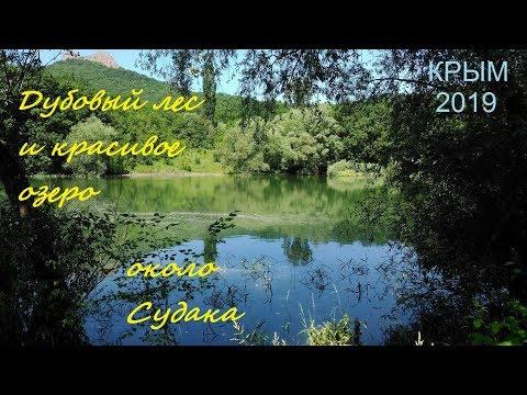 Дубовый лес и красивое озеро в селе Лесном, Крым, Судак, 13 июня 2019