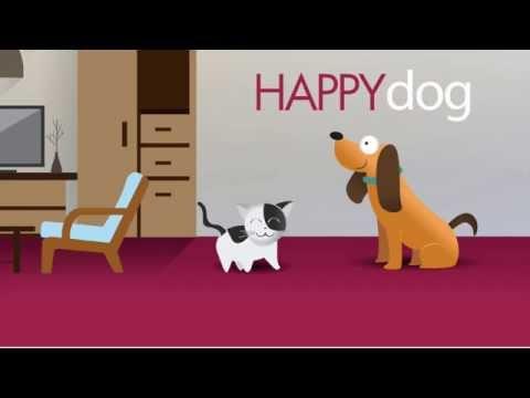 urine e vomito di cani e gatti in casa: risolto!