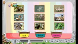สื่อการเรียนการสอน เกมส์ สิ่งแวดล้อมกับทรัพยากรธรรมชาติ ป.3 วิทยาศาสตร์