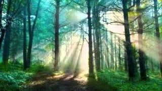 Медитация для снятия депрессии и тревоги (изохрон)