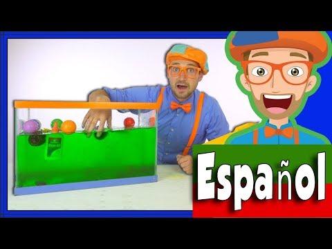 Blippi Español Hundír o Flotar   Experimentos Científicos Divertidos para Niños