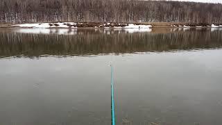 Рыбалка шанхай казань