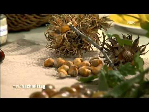 Schujdemen die Kapseln für die Abmagerung in den Apotheken in moskwe zu kaufen