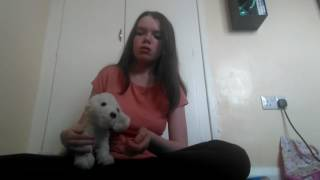 Video how to make a stuffed toy come alive spell