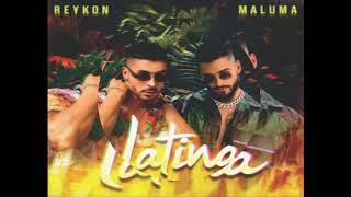 Reykon Feat. Maluma - Latina  (Audio)