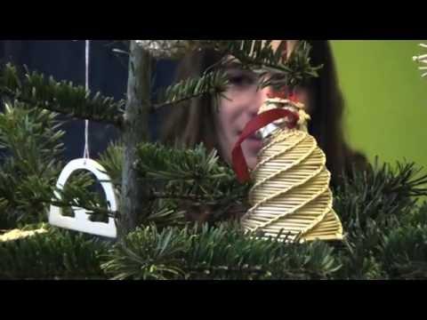 Eko vánoce 2013