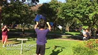 Affinity Flight: 2 Hyacinth Macaws' amazing freeflight through dense obstacle course