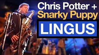 When CHRIS POTTER sat in with Snarky Puppy // VLOG #110