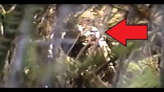 """VERY IMPRESSIVE BIGFOOT FOOTAGE!! - Man Cries In FEAR While Video Taping """"Real Sasquatch Sighting"""""""