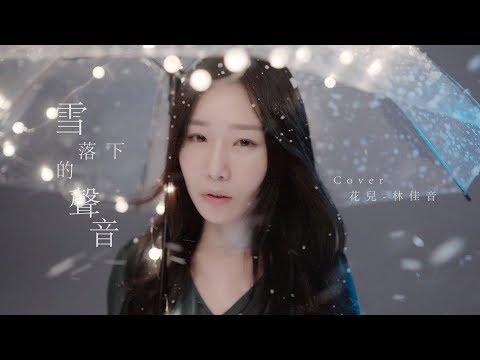 延禧攻略 [雪落下的聲音] 改編COVER BY 花兒 林佳音