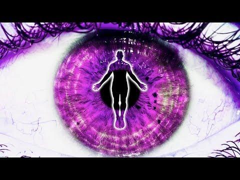 Celandin alkalmazás víziója