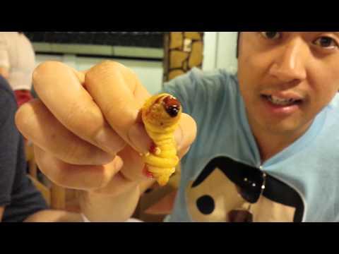 Bark grenades mula sa parasites
