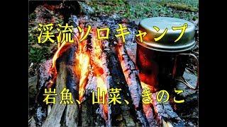 渓流ソロキャンプ【Vol.1】 イワナと山菜 Solo Camp ファットウッド